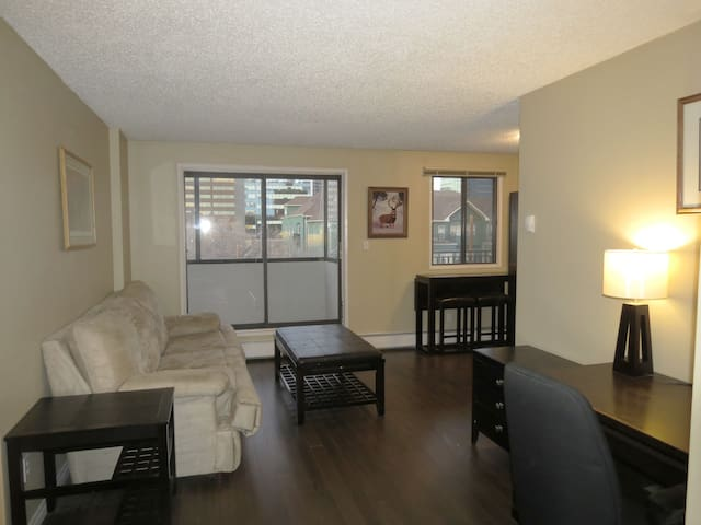 COZY DOWNTOWN BUSINESS APARTMENT - Free Parking!