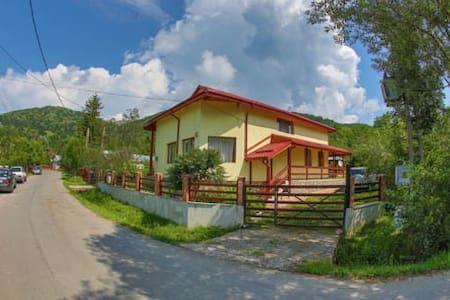 Casa Escu - Buștenari