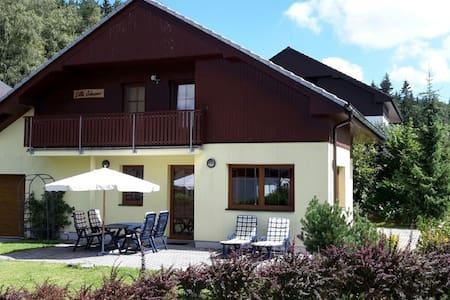 A beautiful villa at the Lipno Lake with ski pistes at walking distance