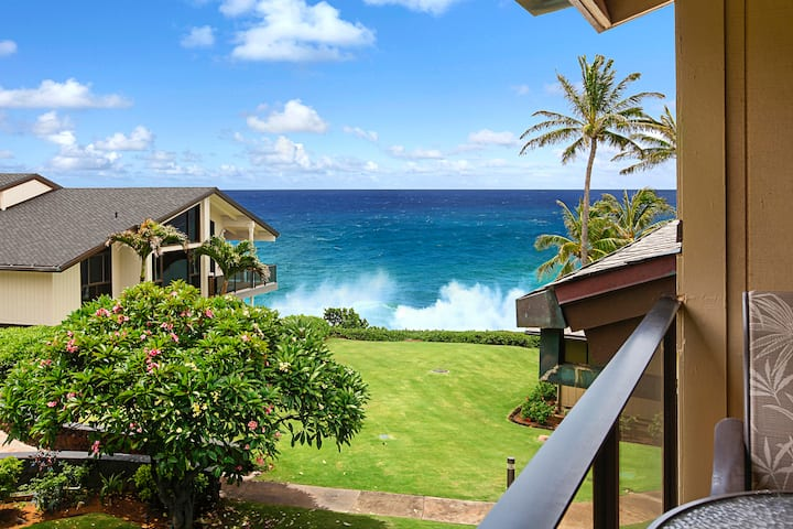 Well Appointed & Spacious Oceanview Condo!