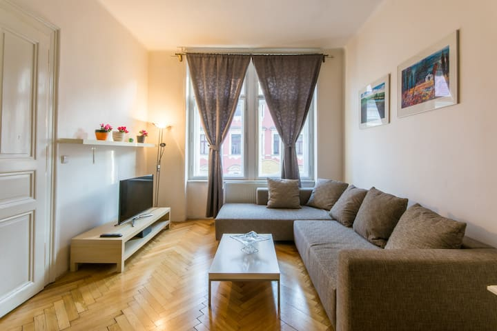 Lovely flat in an excellent location - Praga - Pis