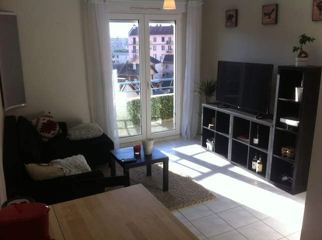 Joli appartement T2, 33m², Ile Verte, Grenoble - Grenoble - Apartment