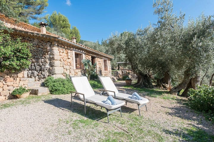 RUSTICA ES SEGUERS - Chalet for 4 people in FORNALUTX.