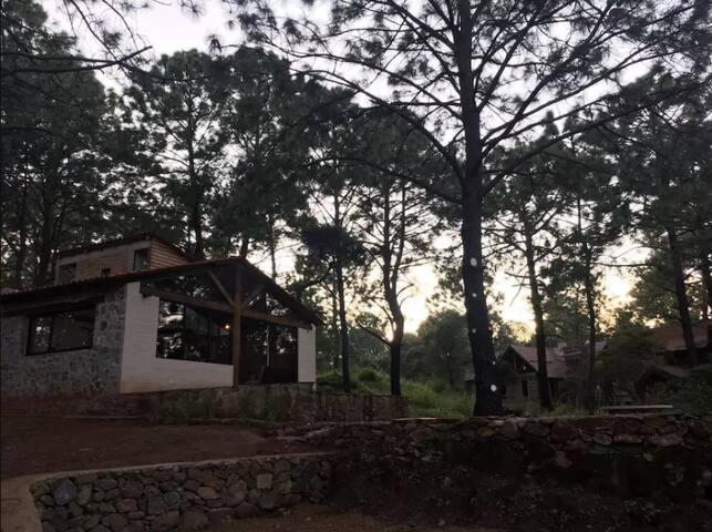 Cabaña Mandala en Bosque el Manto Atemajac