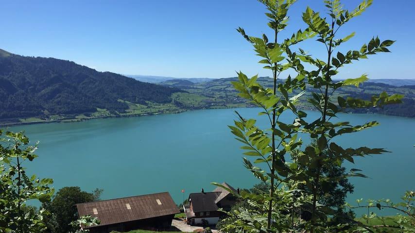 In Landwirtschaft  mit See Sicht - Walchwil