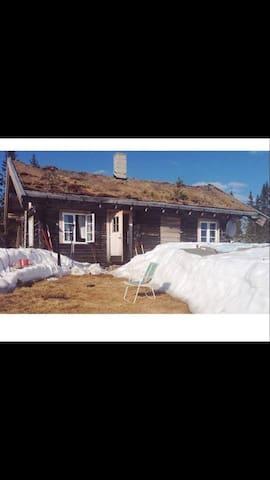 Numedal, hytte, skiløyper.