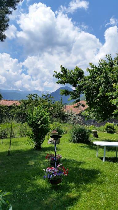 Jardin privé cloturé et ombragé