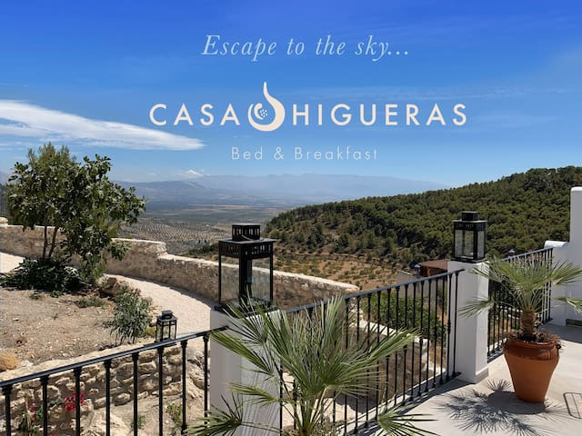 Casa Higueras Bed & Breakfast - The Blue Room