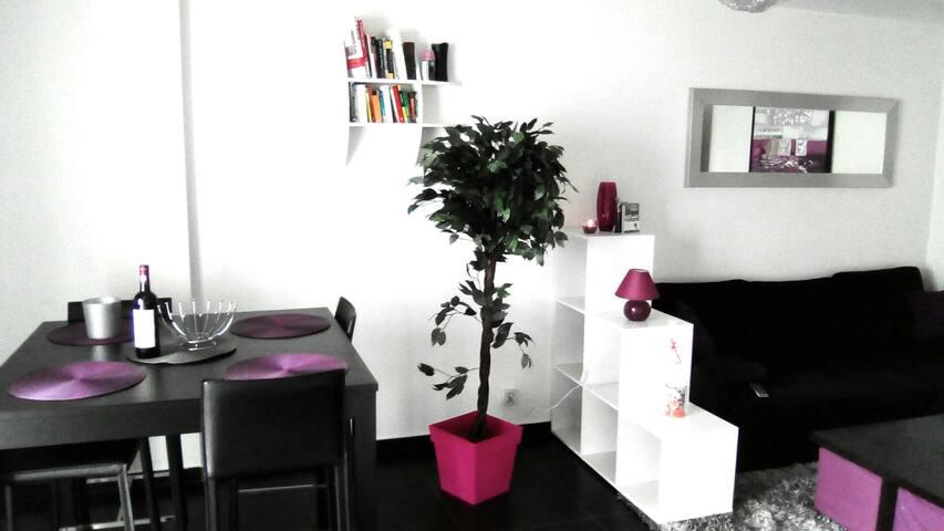 Logement entier en solo, à 2 ou en famille (4) - 聖但尼 - 公寓