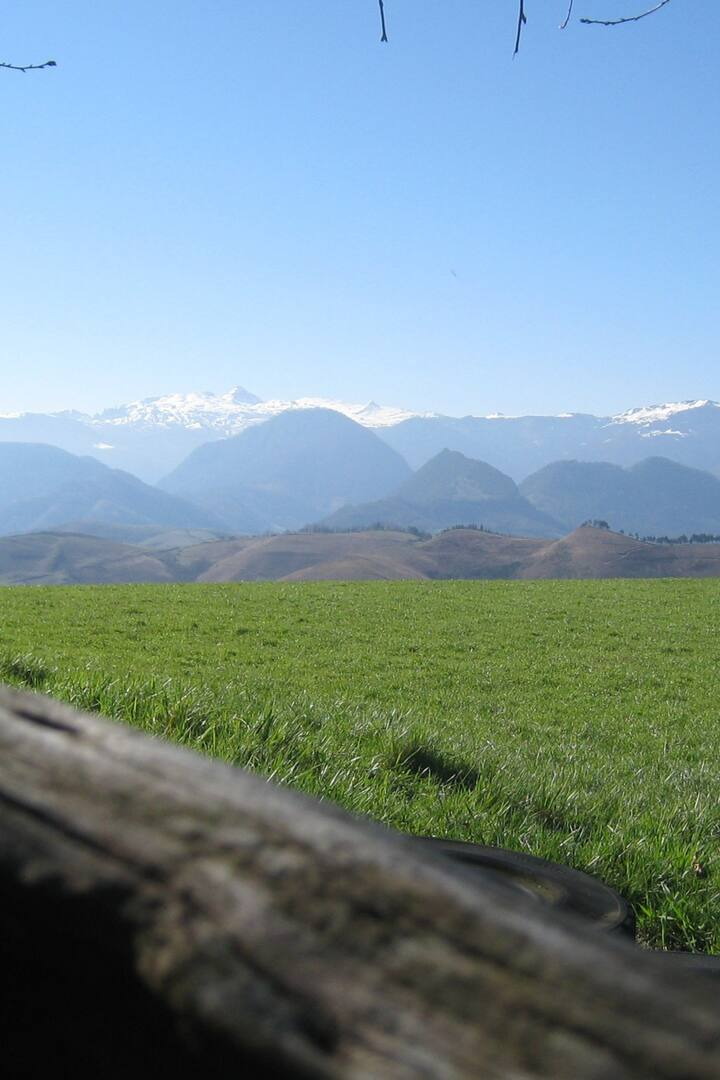 Pyrenean vista