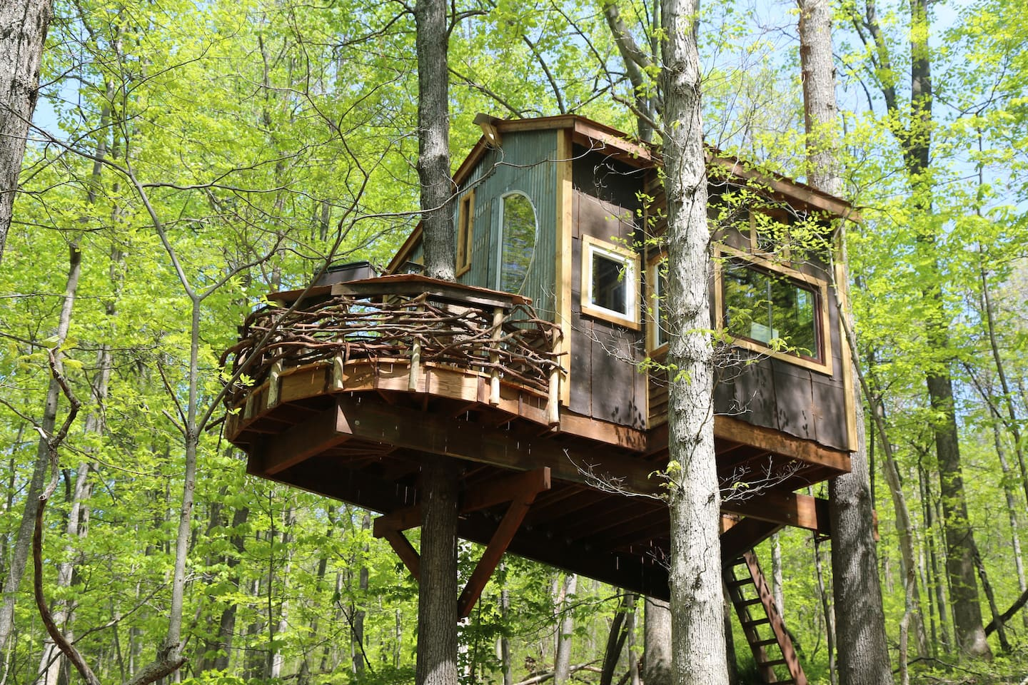treehouse in Virginia with hip design