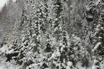 à L'Anse St-Jean il ne manque jamais de neige pour les sport d'hiver