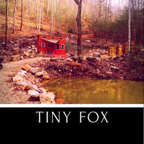 Tiny Fox - Newport - Srub