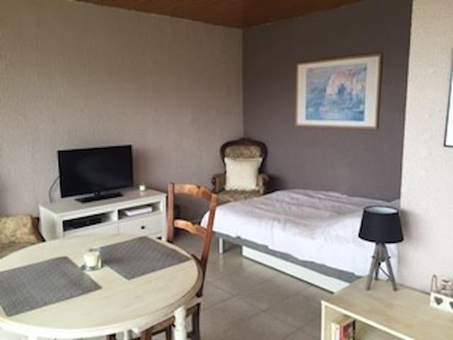 Charmant studio meublé dans quartier calme - Divonne-les-Bains - アパート