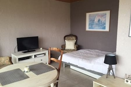 Charmant studio meublé dans quartier calme - Divonne-les-Bains - Apartament