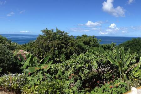 GITES AKANSYEL Vue Mer Jardin Tropical Calme Repos