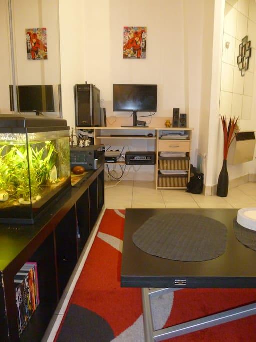 Petit écran mais grande définition ! Aquarium autonome avec quelques petits poissons.