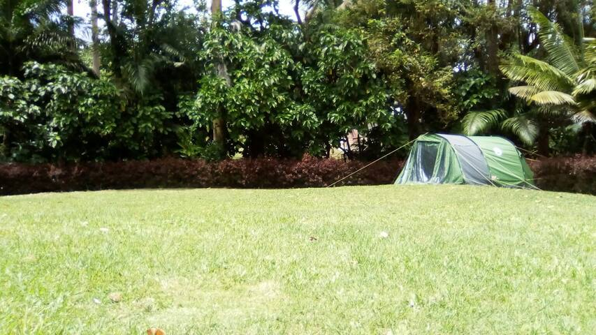 Camping @ Eco Camp Barbados - Saint Thomas - Tent