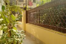 Plants in the balcony