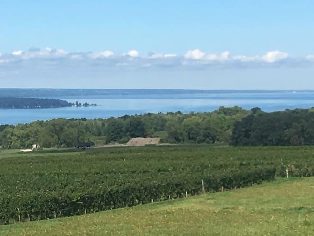 Breathtaking vineyard and lake views - a wonderful combination.