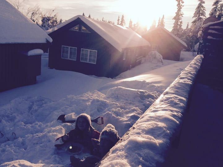 Leilighet Norefjell