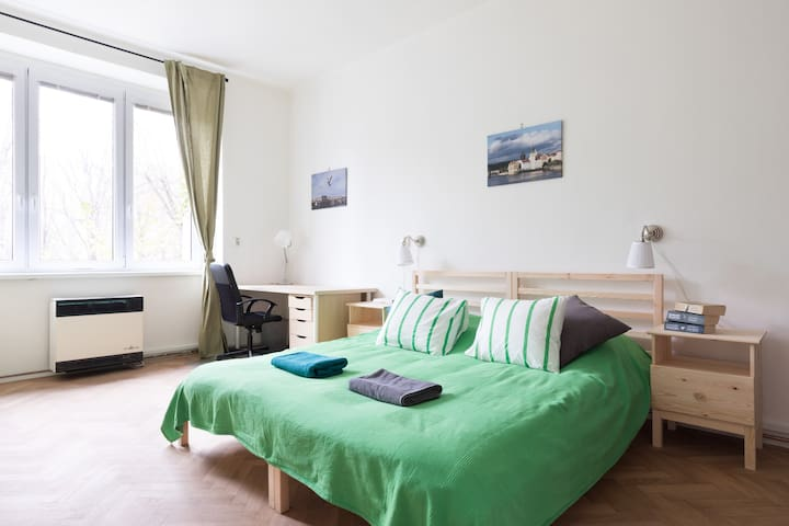 Spacious room 15 minutes from the Prague Castle - Praga - Appartamento