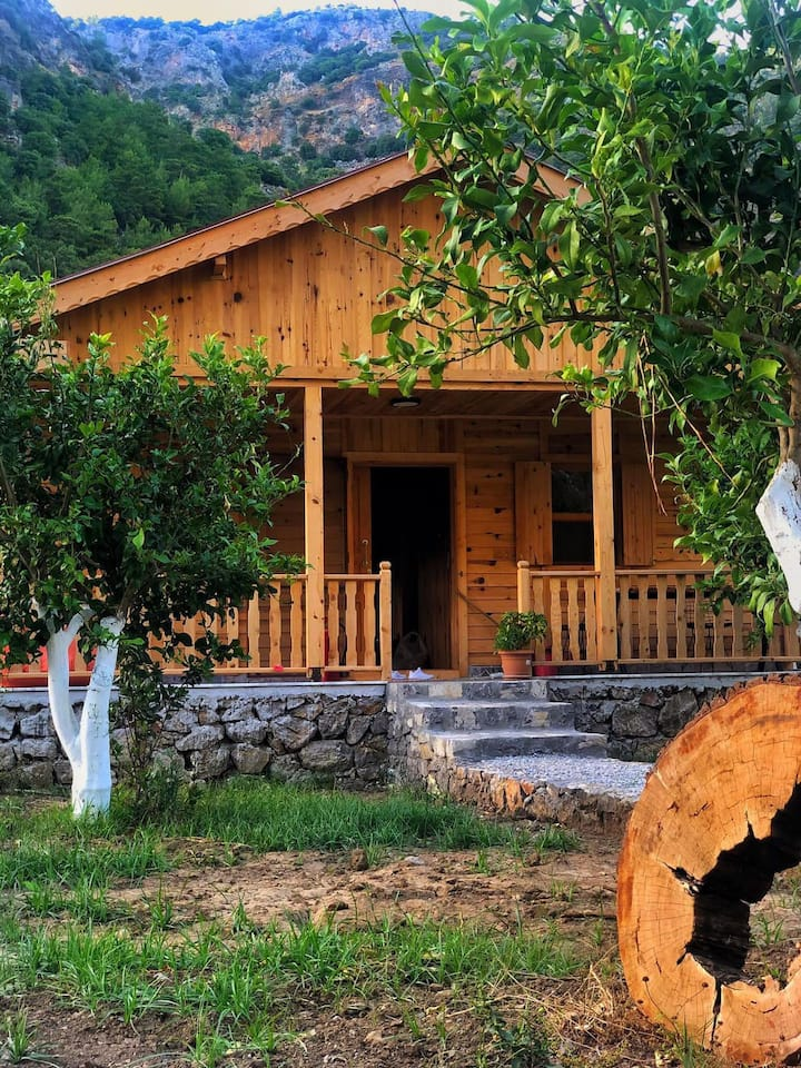 Infinity Lodge - peaceful, rural, relaxation