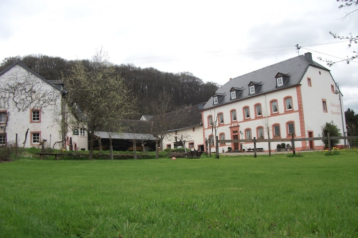 lovely apartment in traditional farm near Vianden