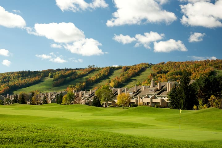 Blue Mountain Resort Wintergreen Three Bedroom