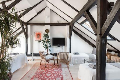 Artful Attic Apartment Near Vienna