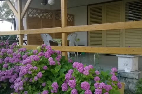 Holiday cottages for rent at Lake Balaton