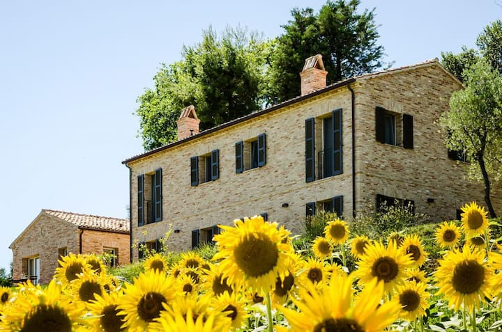 I Girasoli at Marche