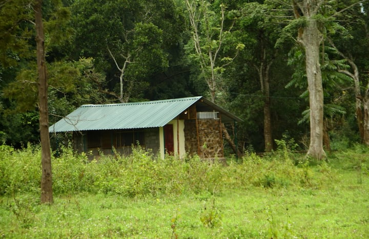 Stone Cottage, Bandipur Deep Jungle Home