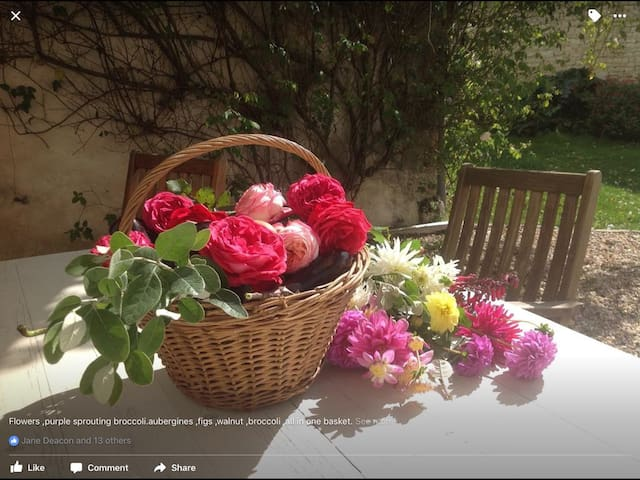 Maison Marguerite countryside bed and breakfast