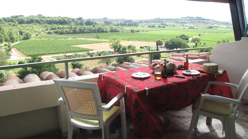 Spacious village house - superb views - Puimisson - Wohnung