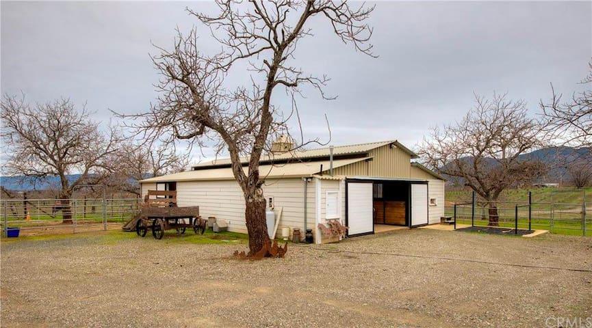 Walnut Rose Farm - Kelseyville - House