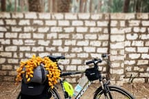 We have a bike wich can be used by our guests