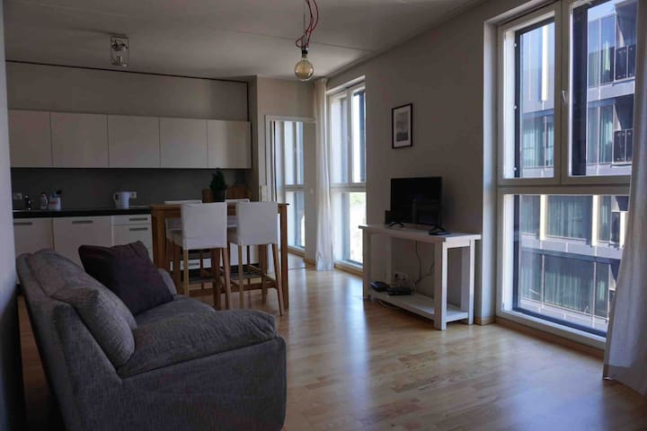 Bright apartment in the heart of the city