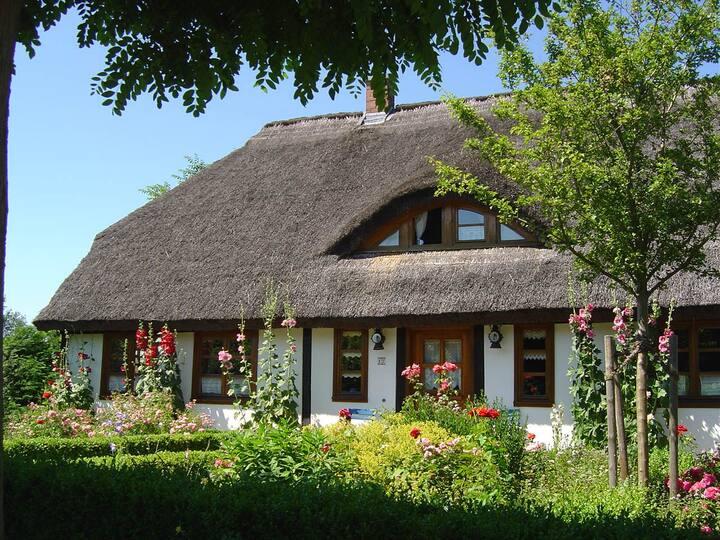 Insel Rügen - Ferienwohnung im Reetdachhaus