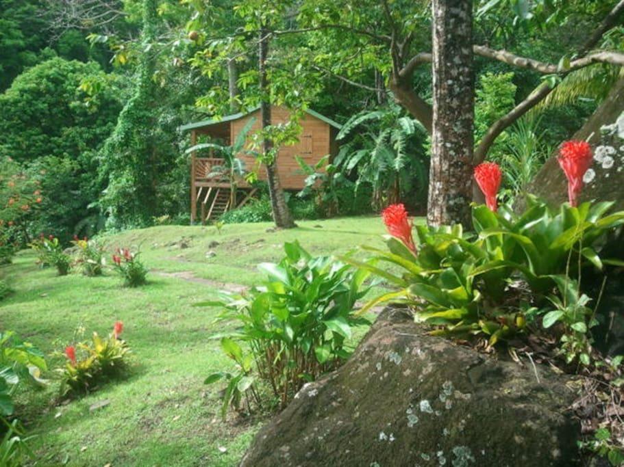 Vue de la cabane depuis le parc
