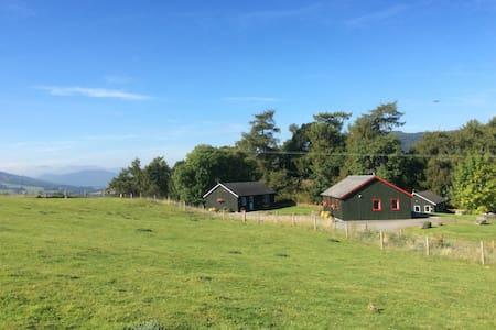 Cluny Lodge - Aberfeldy - Aberfeldy - Blockhütte
