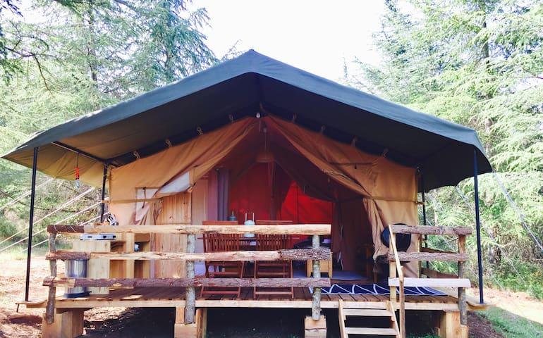 Luxury Safari tent Glamping near Carcassonne