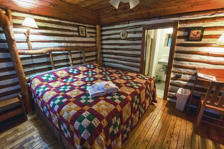 Asheville Historic Log Cabin (3) Snuggle Inn - Asheville
