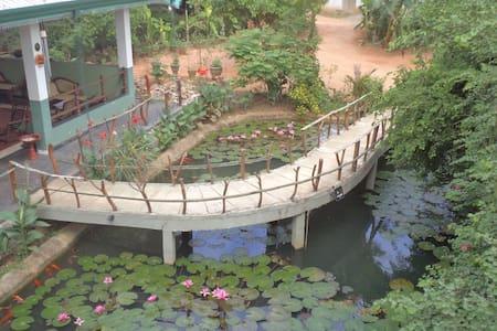 Hungry Lion Resort Jungle View - Sigiriya