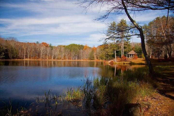 Enjoy a walk or explore around Lake Occquittunk right across the street!
