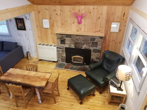 Adirondack Birch Inspired Cabin