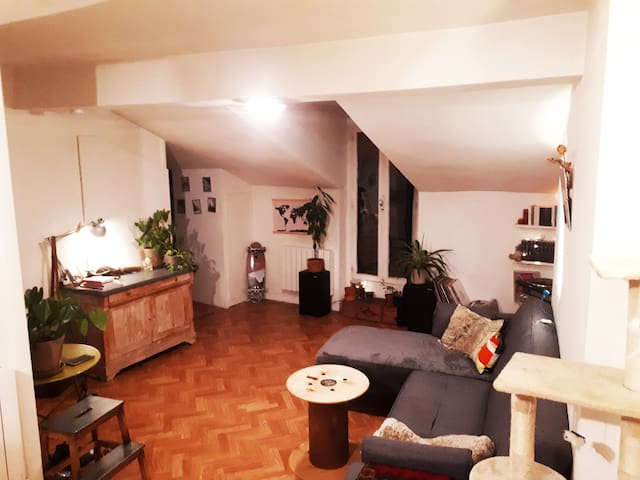 Appartement cosy hyper-centre