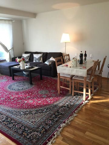 Pleasant stay in Oslo (PHONE NUMBER HIDDEN) - Oslo - Apartment