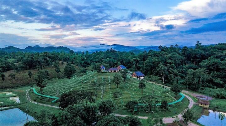 Private Villas @Doi Mae Salong