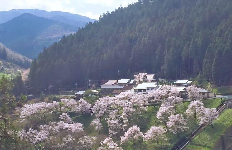 奈良・柏荘 NARA・KASHIWA-HOUSE - Gojō-shi - Villa